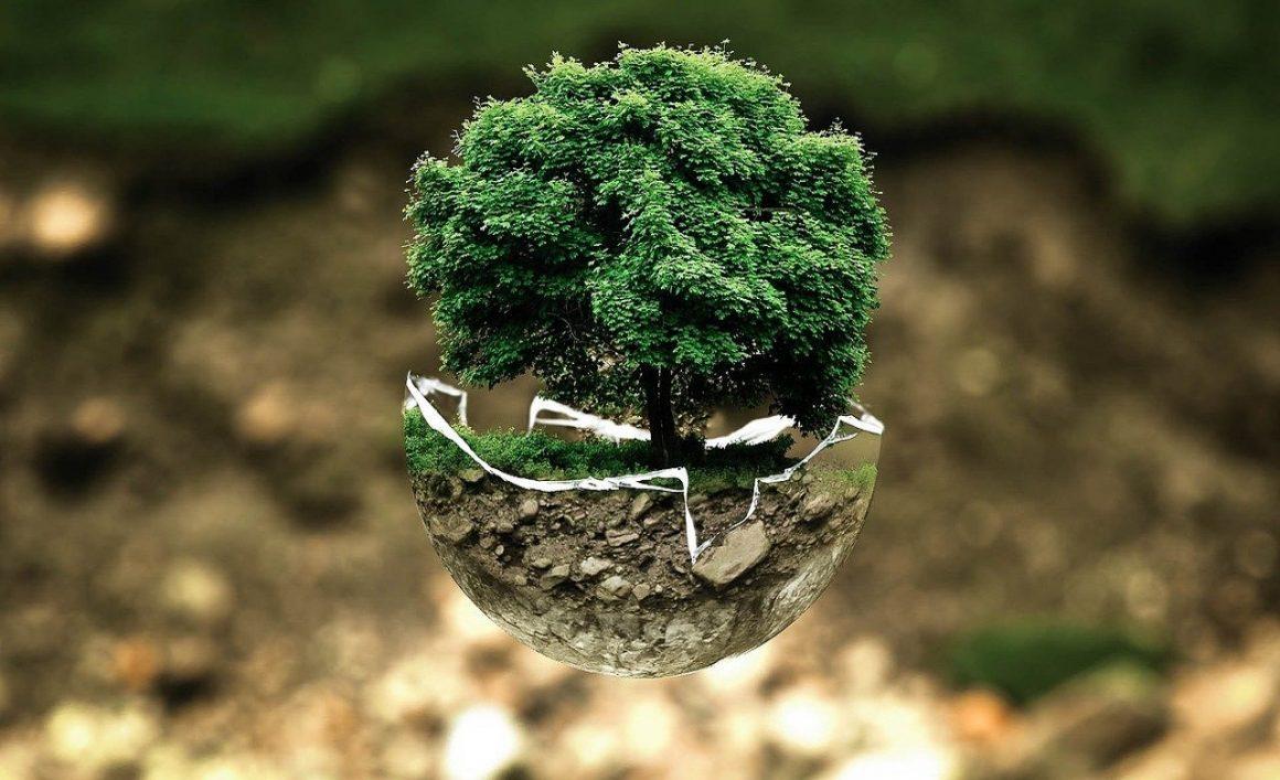 Green Deal: planul de acțiune privind reducerea la zero a poluării a fost prezentat