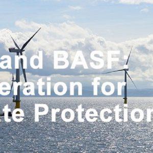 BASF și RWE își propun să colaboreze în domeniul noilor tehnologii pentru protecția mediului